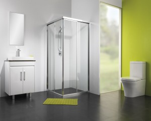 Orignal Shower Screen
